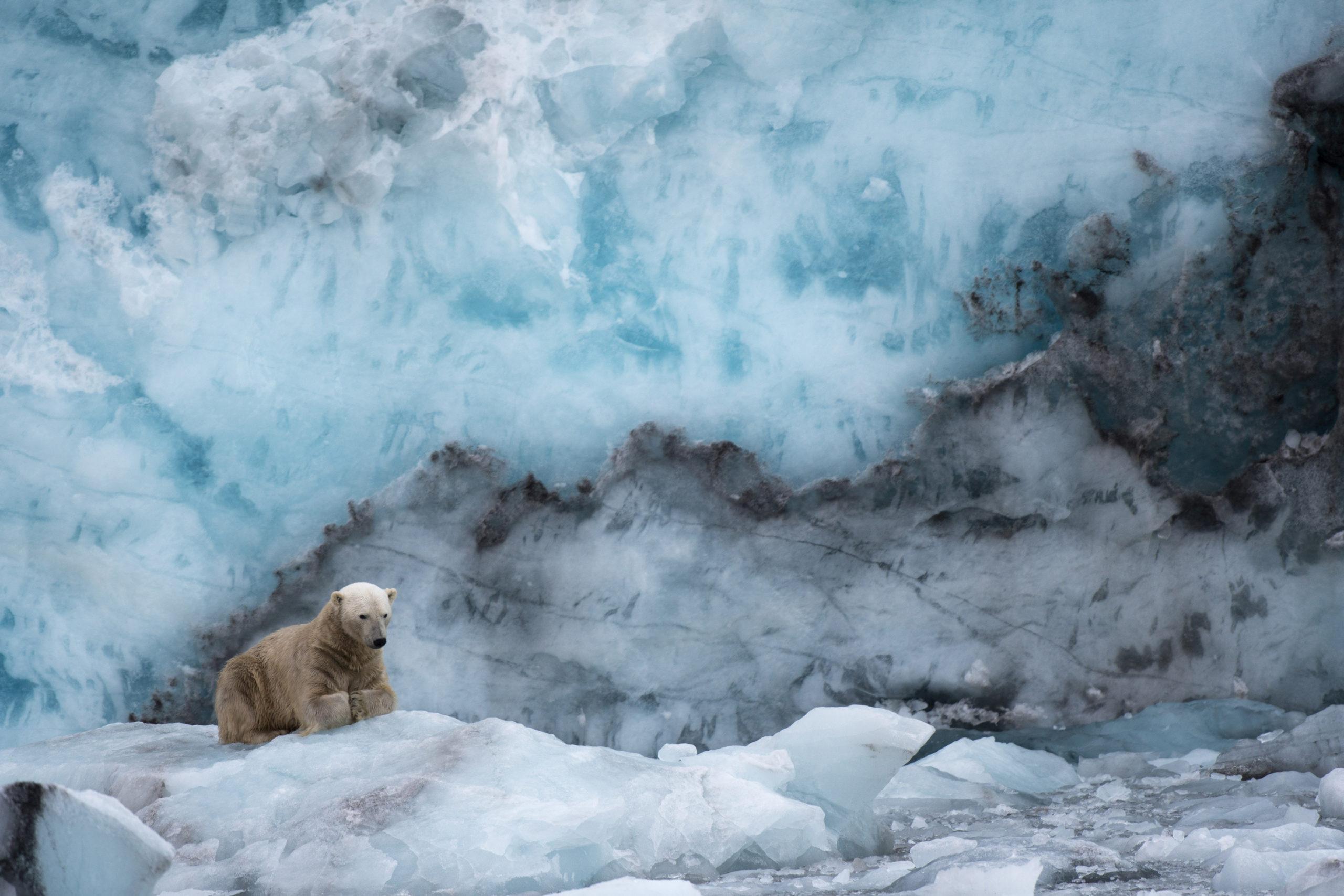 SEVENO JM - Horizon Svalbard